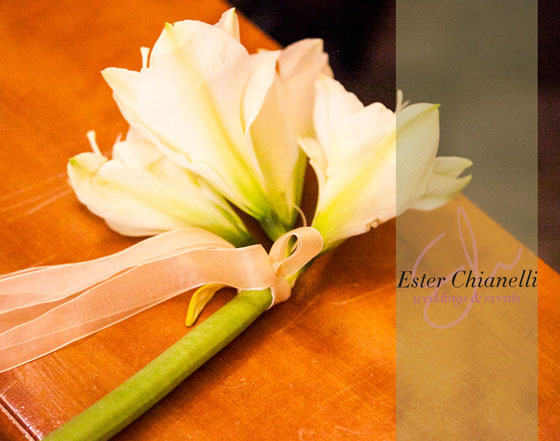 amarillis_bianco_esterchianelli_weddingplanner
