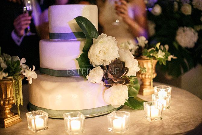succulent_cake